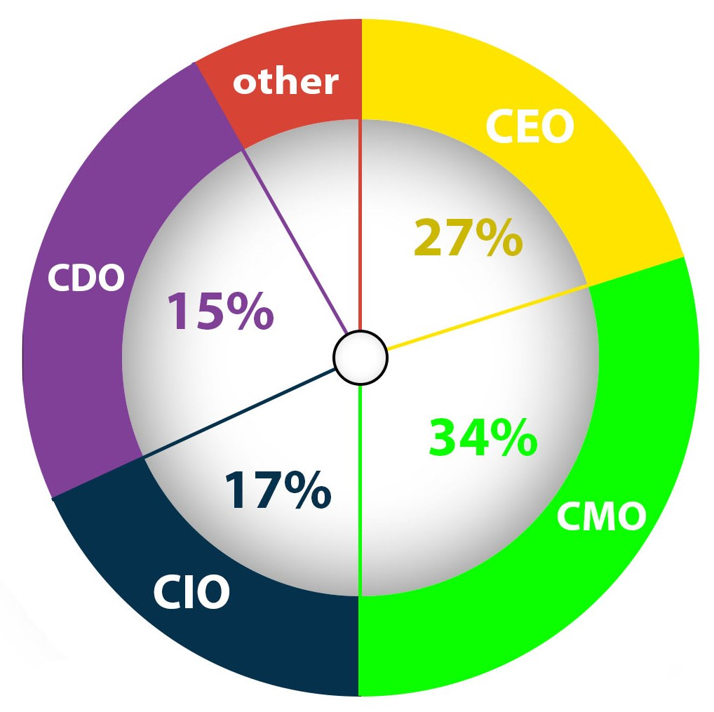 Pie chart displays ownership of Digital Transformation Project